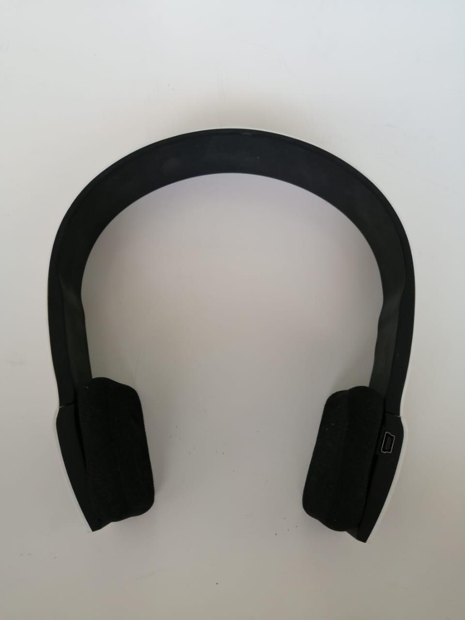 Earphones3